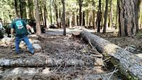 South Fork Campground Clean Up 4
